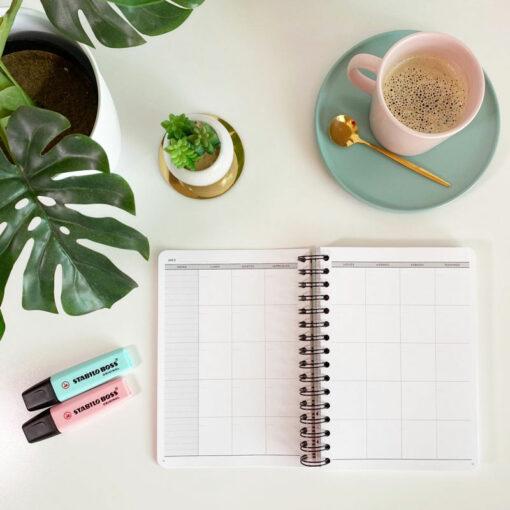 organizador diario